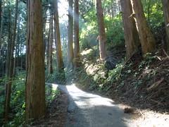 御岳山20111029-056
