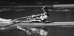 Rowing (Paolo Mariani | Fotografo) Tags: bw italy october paolo fiume bn po rowing turin mariani 2011 canottaggio blackwhitephotos canoneos7d