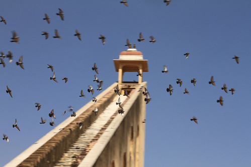 Jantar Mantar with birds 2