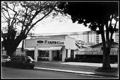 Caf (Paulo JS Ferraz) Tags: film caf filme kyocera rvores doublex banhado 5222 17min kodakdoublex yashicamf3 kodak5222 pauloferraz pjsf paulojsferraz caffenol814sal