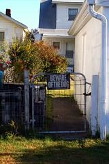 Beware (lawyertomkaren) Tags: autumn dog fall germantown colors sign backyard beware kentucky louisville schneitzelburg