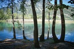 Lake Cavazzo (Daria Angeli) Tags: trees sky mountain lake nature water landscape europe carnia 2011 friuliveneziagiulia otw beautifulphoto natureplus flickraward flickrestrellas worldtrekker spiritofphotography flickrunitedaward