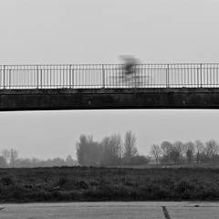Cyclist - on a dull day (Explored) (Petur) Tags: bridge trees bw white black cold monochrome square cyclist ghost miserable dull damp blackwhitephotos abigfave