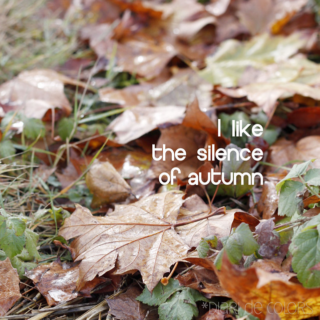 I like the silence of autumn