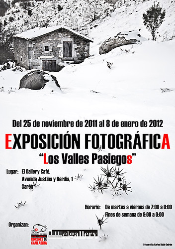 Cartel expo Sarón