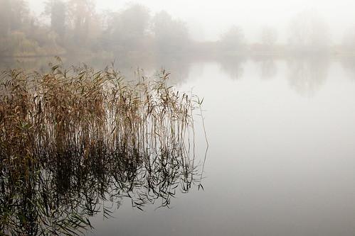 #09 Misty Lake