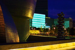 Bilbao 270 le Muse Guggenheim (paspog) Tags: spain bilbao guggenheim espagne euskadi spanien guggenheimmuseum paysbasque museguggenheim
