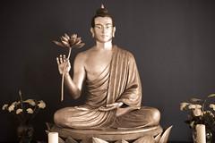 Manchester Buddhist Centre shrine 3