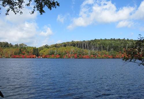 白駒池/南岸から見た紅葉 2011年10月7日 by Poran111