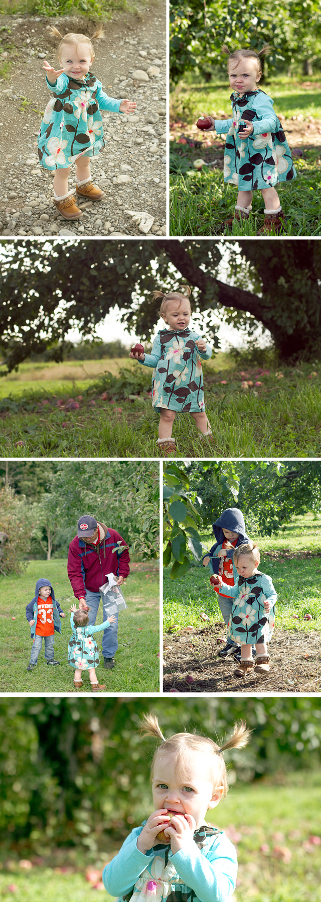 ApplePicking2011-Collage01