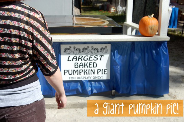largest pumpkin pie!
