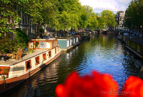 Amsterdam by _Paula AnDDrade