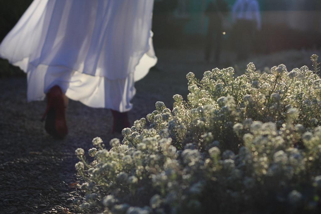 Свадьба (41)