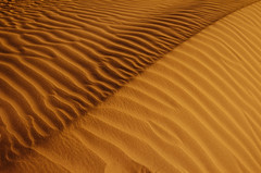 Sandy Abstraction (Saleh Mohammed) Tags: canon eos dc sand desert angle sigma soil earthy mohammed land abstraction 1020mm stripping tariq saleh  d600   hsm             almutlaq