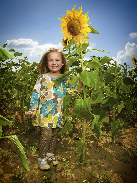 Madison and her Sunflower