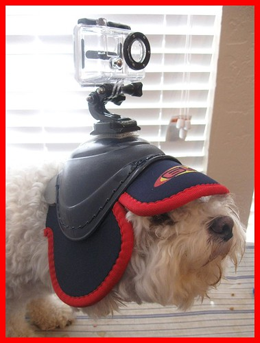 Case of camera mounted to helmet