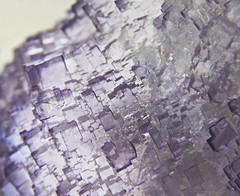 Fluorite (Kotomi_) Tags: london stone museum mineral naturalhistorymuseum gem