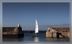 Sail Away Explored (Bill McKenzie / bmphoto) Tags: sun eos harbour best sail 5d moray findochty mkii