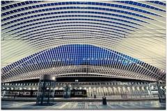 Inside Lige-Guillemins station (Alexandre Moreau | Photography) Tags: blue light white lines station night train dark design belgium empty wideangle illuminated lige coldtones guillemins