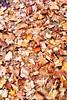 Autumn Leaves by Alex Hopkins