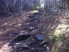 Rocky Steep Trail on Cold Mountain