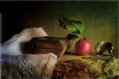Without Title 2 (Arunas S) Tags: autumn stilllife texture apple stillleben time background watch stilleven stilleben baltic retro lithuania tabletop naturemorte  naturamorta naturalezamuerta lietuva palanga  stonetable naturezamorta   martwanatura asetelma withouttitle natiurmortas natrmort klusdaba artistoftheyearlevel2 booksandmystery etamvitae