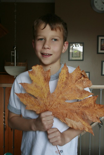 That is a real leaf. No joke!