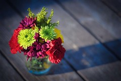 november 1st (jordan parks) Tags: flowers masonjar jar bouquet kerr onthedeck mybirthdayflowers happynovember theythinkimnuts myneighborswerewatchingme becausedoesnteveryonetaketheirflowersoutsideputthemonthegroundandphotographthem soigavethemagoodstare