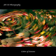 Colorful Whirlpool (JIN X3) Tags: leaves stream sigma foveon dp1x