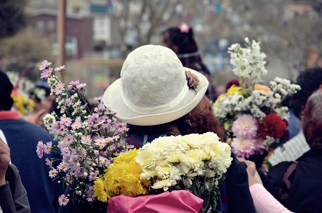 Te llevaré flores...