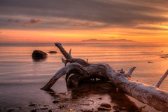 Chippewa Sunrise (KarenR-TB) Tags: ontario sunrise driftwood lakesuperior thunderbay sleepinggiant