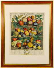 195. Fruit Chromolithograph