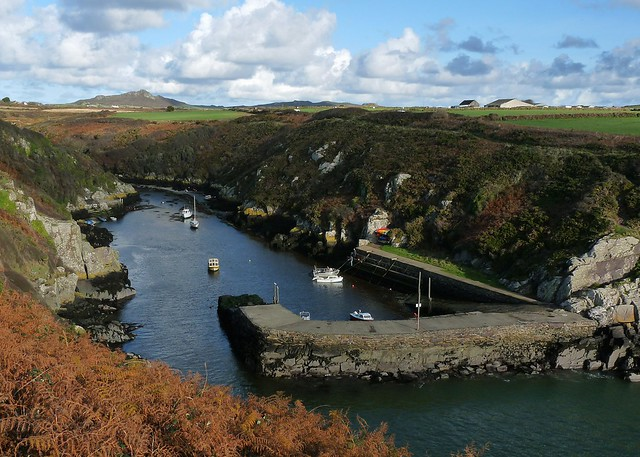 25257 - Porth Clais, Pembrokeshire