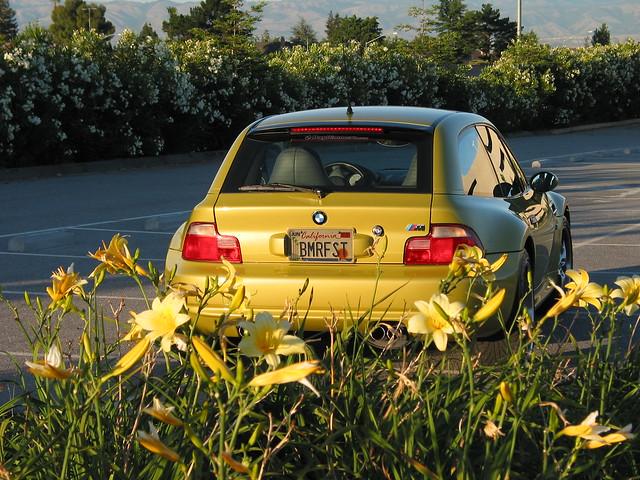 2001 BMW M Coupe | Phoenix Yellow | Gray/Black