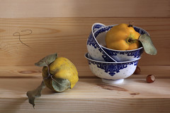 2 & Wasp (panga_ua) Tags: lighting blue 2 stilllife art fruits yellow composition canon wooden boards wasp artistic availablelight unity ukraine binary porcelaine bowls arrangement tabletop fibers bodegon naturemorte artisticphotography naturamorta artphotography quinces hazlenuts sharpfocus naturaltexture woood 2wasp nataliepanga