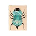 smallbug17