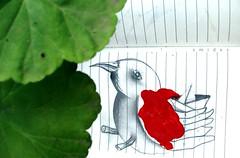 (Felipe Smides) Tags: animal pequeño desastre smides felipesmides