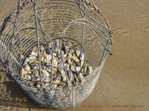 Petite pêche de pignons (tellines)