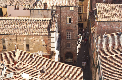 Looking down on Lucca by BeccaG