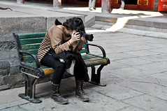 Photographer Candid (AaronBerkovich) Tags: landscape candids buddhisttemple chengde mountainresort tibetantemple templecomplex templearchitecture chengdechina palacearchitecture aaronberkovich chinesetemplecomplex chengdetourism chengdethingstosee tibetanpalacereplica