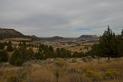 Blue_Rocks_Field (robnlville) Tags: oregon paintedhills johndayfossilbeds paintedhillsoregon