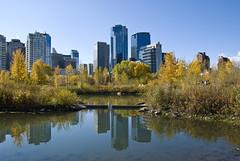 Prince's Island Park, Calgary, Alberta (madlyinlovewithlife) Tags: autumn calgary fall fallcolors autumncolours autumncolors alberta citypark princesislandpark fallcolours