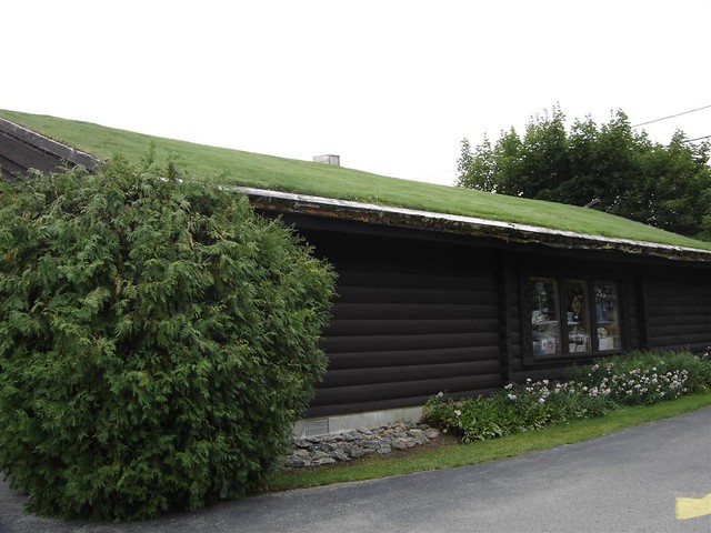 techogreen roof (windjue)