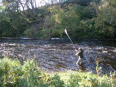 Smooth action... not... (thomvb) Tags: fishing salmon stinchar knockdolian