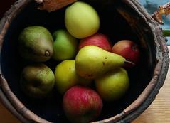 Autumn Harvest (BCharmer) Tags: stilllife pears bowl apples farmlife bonedryridge colleenmacdonaldbonedryridge