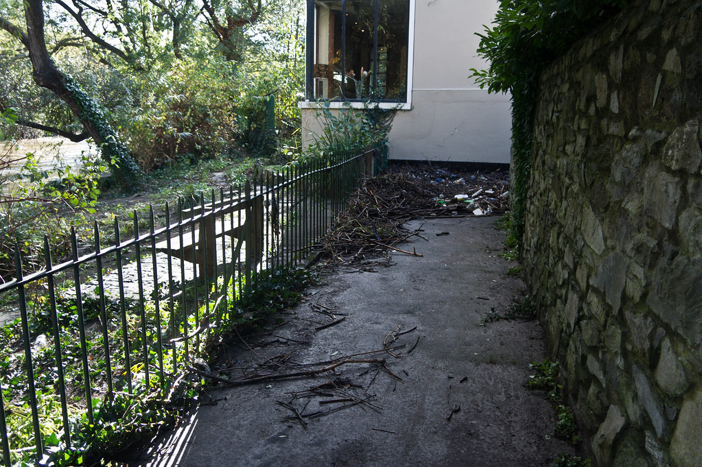 Flooding In Dublin - River Dodder, The Day After