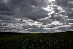 Dark Valle de L'Ourthe (beta karel) Tags: light sky panorama cloud sunlight green dark landscape corn flickr village belgium horizon ardennen natuur valley 2011 canoneos40d betakarel
