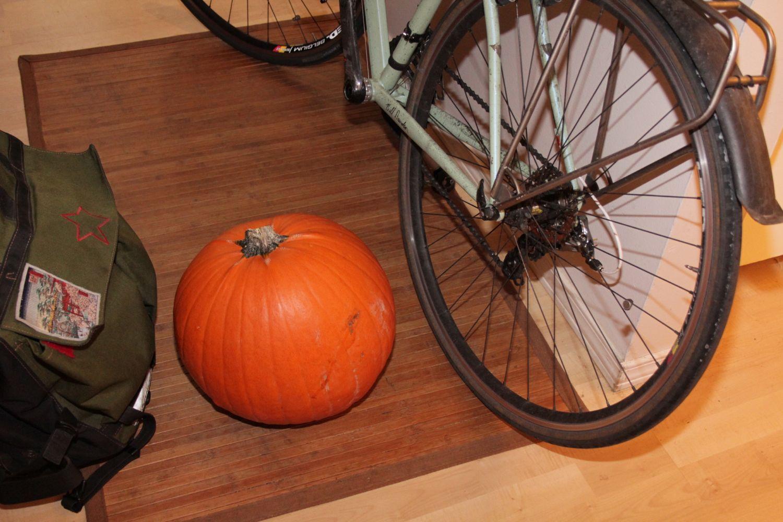 18c6bd19e8ca Jack o  Lantern time at the bike shop - Bike Hugger
