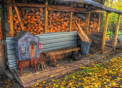 Canadian woodpile (K D Photos) Tags: autumn leaves bc logs richmond wetlands hdr woodpile finnslough