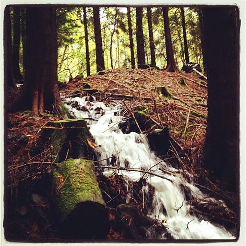 Waterfall in Devon Consuls